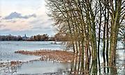 Nederland, Nijmegen, ooijpolder, 7-1-2018 Het waterpeil van de rivier de Waal stijgt weer. De uiterwaarden lopen onder. Het vee is naar hoger land gedreven. De wateroverlaat stuwt het Waalwater de oude Waal in.Foto: Flip Franssen
