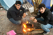 France. Refugees. . Grande Synthe camp near Dunkirk. People are camping in a wood with very few facilities. Two Iraqi Kurdish men cook.