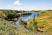 Beautiful pond near Port aux Basques, Newfoundland, Canada