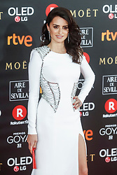 MADRID, SPAIN- February 03: Penelope Cruz at the Goya cinema awards at the Marriot Hotel in Madrid ,Spain February 3, 2018. ***NO SPAIN*** CAP/MPI/RJP ©RJP/MPI/Capital Pictures. 04 Feb 2018 Pictured: Penelope Cruz. Photo credit: RJP/MPI/Capital Pictures / MEGA TheMegaAgency.com +1 888 505 6342