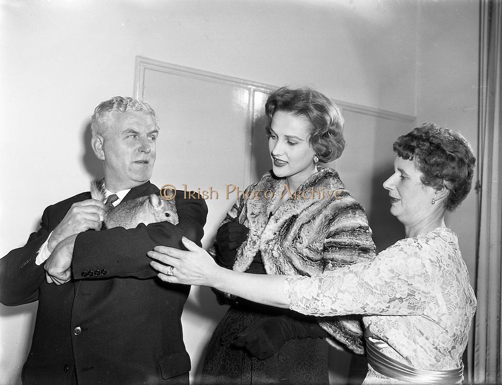 10/10/1958<br /> 10/10/1958<br /> 10 October 1958<br /> Press Conference by Chinchilla Ltd at the Shelbourne Hotel, Dublin, for Domas Ltd