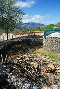 Pile of firewood on ground, next to circular stack of firewood, mountains in distance. Rascane, Croatia
