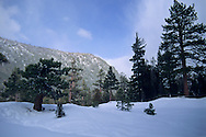 Winter in Desolation Wilderness, near Lake Tahoe, California