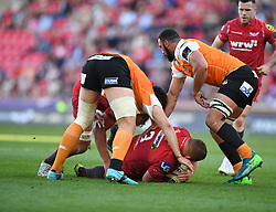 Scarlets Samson Lee <br /> <br /> Photographer Mike Jones/Replay Images<br /> <br /> Guinness PRO14 Round 22 - Scarlets v Cheetahs - Saturday 5th May 2018 - Parc Y Scarlets - Llanelli<br /> <br /> World Copyright © Replay Images . All rights reserved. info@replayimages.co.uk - http://replayimages.co.uk