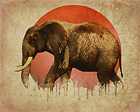 This fine art piece from Jan Keteleer displays the powerful imagery of an elephant in motion. While this image can be arresting unto itself, a deeper look reveals something considerably more tragic. It shows us the presence of a melting sun, as well. These two images combine in such a way as to create a powerful message. If we do not do something about climate change, even the extraordinary elephants will no longer have a place of which to call their own. This is a visually striking piece on a number of levels. It is not difficult by any means to imagine it in your space.<br /> -<br /> BUY THIS PRINT AT<br /> <br /> FINE ART AMERICA<br /> ENGLISH<br /> https://janke.pixels.com/featured/elephant-walking-jan-keteleer.html<br /> <br /> WADM / OH MY PRINTS<br /> DUTCH / FRENCH / GERMAN<br /> https://www.werkaandemuur.nl/nl/shopwerk/Klimaatverandering---Olifant-wandelend/477959/134