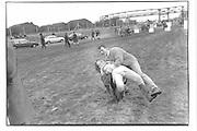 Caroline Turner and Sebastian Hindley, Grand National Aintree, 5/04/86© Copyright Photograph by Dafydd Jones 66 Stockwell Park Rd. London SW9 0DA Tel 020 7733 0108 www.dafjones.com