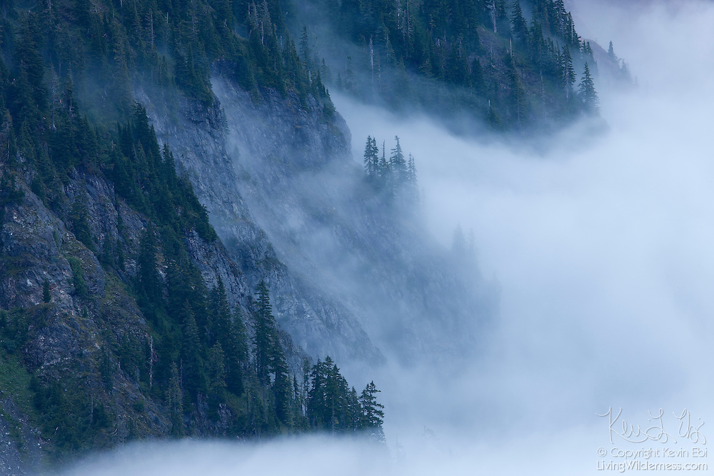 Thick fog shrouds Shuksan Arm, a steep rocky ridge in the North Cascades of Washington state. This was photographed from Artists Ridge, located at the end of the Mount Baker Highway (State Route 542), one of Washington state's scenic byways.