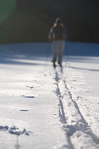 Young woman cross country skiing near Silverton, CO