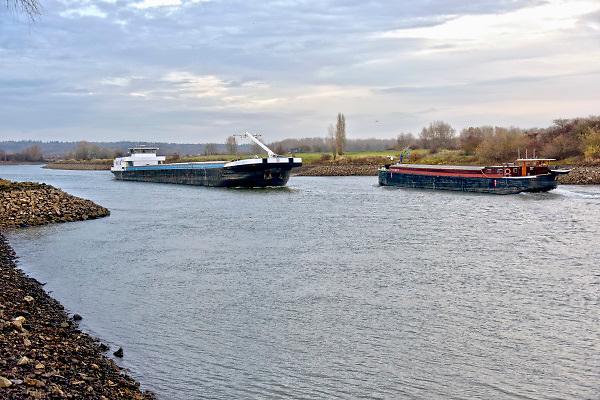 Nederland, the netherlands, Millingen, 29-11-2018 Nog nooit stond het water in de IJssel zo laag . Binnenvaartschepen varen langs de oever en de ooijpolder. Door de aanhoudende droogte staat het water in de rijn, ijssel en waal extreem laag . Laagterecord en de laagste officiele stand ooit bij Lobith gemeten. Schepen moeten minder lading innemen om niet te diep te komen . Hierdoor is het drukker in de smallere vaargeul . Door te weinig regenval in het stroomgebied van de rijn is het de waterafvoer extreem weinig .  De Waal is het Nederlandse deel van de Rijn en de belangrijkste vaarroute van en naar Rotterdam en Duitsland . Aftakkingen zijn de minder bevaren Neder Rijn en IJssel. De levering, aanvoer van vracht, lading,grondstoffen, voor fabrieken en brandstof wordt problematisch.Foto: Flip Franssen