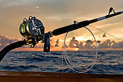 Pitch bait fishing tackle outfit with a sunset background.