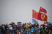April 17, 2014 - Shanghai, China. UBS Chinese Formula One Grand Prix. Chinese F1 fans