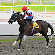 Dixies Dream and George Baker winning the 4.00 race