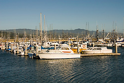 Boats in Princeton Harbor,.San Mateo Coast of California, south of San Francisco.  Photo copyright Lee Foster, 510-549-2202, lee@fostertravel.com, www.fostertravel.com. Photo 428-31222