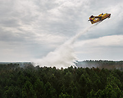 Firefighting Canadair planes dropping water with wetting agent on top of fire.<br /> <br /> Views from inside the helicopter of the Fire and Rescue Departmental Service. Spotting pine trees forest fires and analysing evolution of fire to best direct firefighters on the ground as well as indicating locations to drop water for firefighting planes.<br /> Near Bordeaux, France.