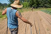 Dev, an intern from Rogue Farm Corps