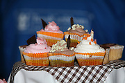 Oasis of the Seas at the shipyard in Turku, Finland where she is being built..Photos show Royal Caribbean's latest  ship 2 months before completion...Cupcakes.