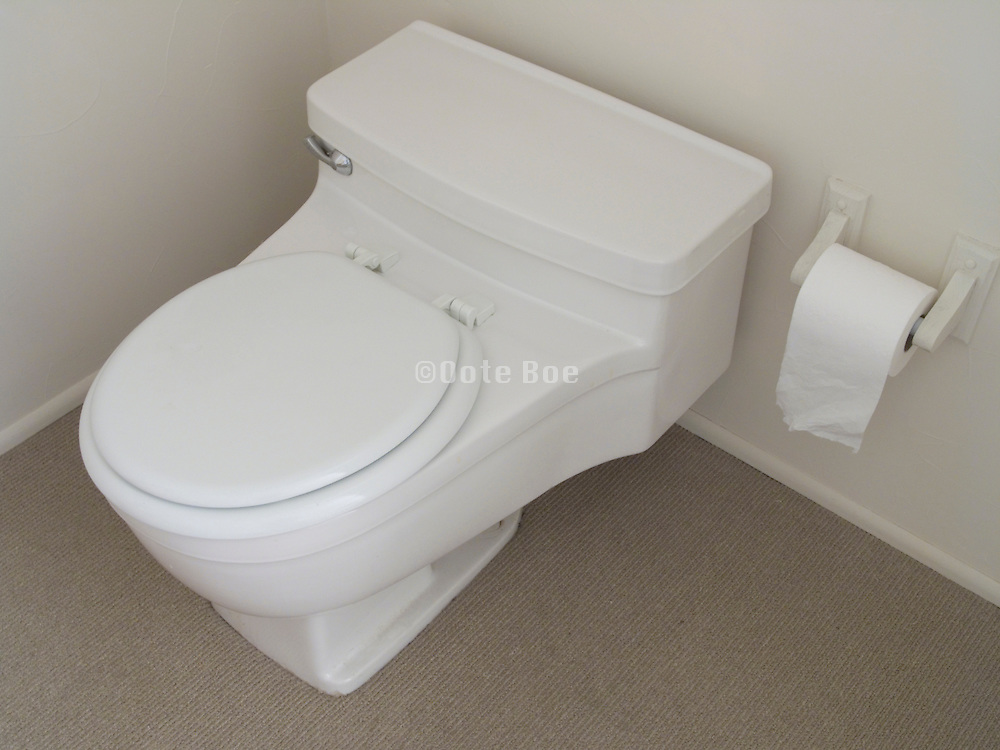 overhead view of toilet with closed seat
