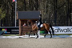 Luttjeboer Corinda, NED, Cirano<br /> CDI 3* Opglabeek<br /> © Hippo Foto - Dirk Caremans<br />  23/04/2021
