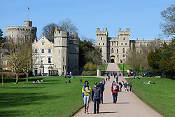 General view approaching Windsor Castle along the Long Walk in Windsor, Berkshire, the final part of the carriage procession route around Windsor planned for the upcoming wedding of Prince Harry and Meghan Markle. Picture date: Thursday April 5th, 2018. Photo credit should read: Matt Crossick/ EMPICS Entertainment.