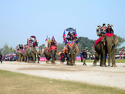 The parade of 67 elephants at The Sayaboury Elephant Festival, Sayaboury province, Lao PDR. Originally created by ElefantAsia in 2007, the 3-day elephant festival takes place in February in the province of Sayaboury with over 80,000 local and international people coming together to experience the grand procession of decorated elephants. It is now organised by the provincial government of Sayaboury.The Elephant Festival is designed to draw the public's attention to the condition of the endangered elephant, whilst acknowledging and celebrating the ancestral tradition of elephant domestication and the way of life chosen by the mahout.