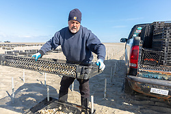 James Ward Loading Oyster Trays