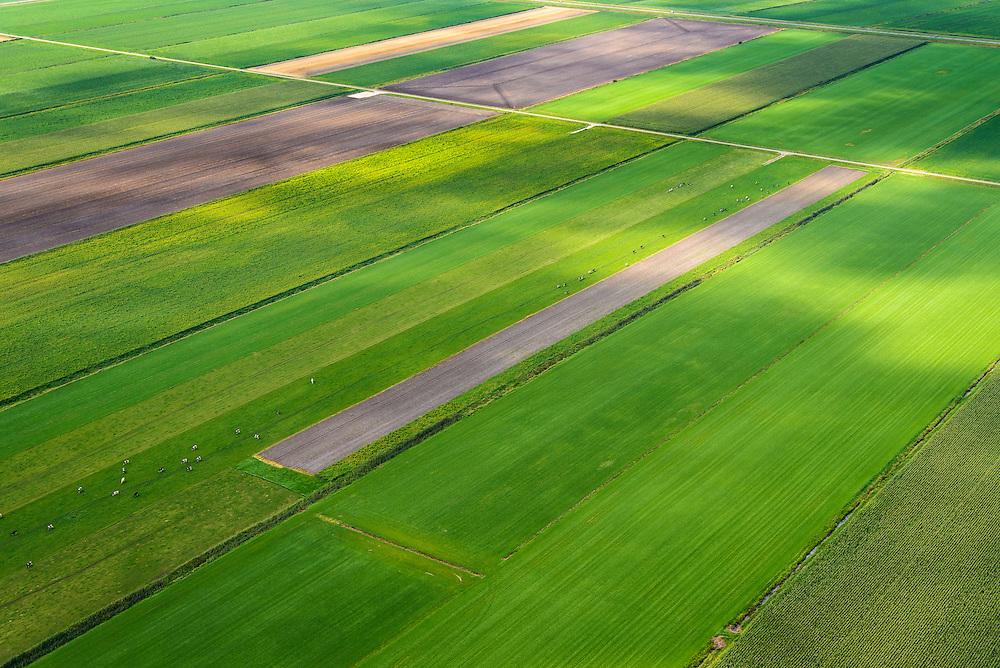 Nederland, Drenthe, Gemeente Borger-Odoorn, 27-08-2013; Zuiderdwarsplaatsen, veenkoloniaal landschap van grasland en aardappelvelden, omgeving Nieuw-Buinen.<br /> Peat landscape, grass land and potatoe fields (East Netherlands)<br /> luchtfoto (toeslag op standaard tarieven);<br /> aerial photo (additional fee required);<br /> copyright foto/photo Siebe Swart.