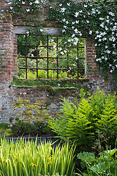 A shady corner at Sissinghurst Castle Garden with Iris pseudacorus 'Variegata', clematis and ferns