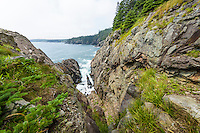 Rugged Maine Atlantic Ocean coastal environment