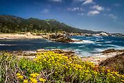 Point Lobos State Reserve looking toward Weston Beach, near Carmel, California, Highway 1,