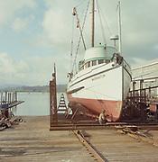 ackroyd-C02471-1. Bumble Bee Drydock. Astoria. May 7, 1968