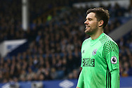 West Bromwich Albion Goalkeeper Ben Foster looks on. Premier league match, Everton v West Bromwich Albion at Goodison Park in Liverpool, Merseyside on Saturday 11th March 2017.<br /> pic by Chris Stading, Andrew Orchard sports photography.