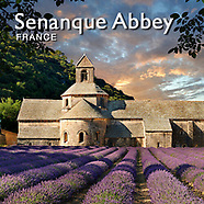 Senanque Abbey France Pictures, Photos and Images
