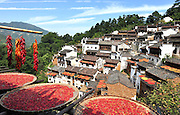 (CHINA OUT, FINLAND OUT)<br /> <br /> WUYUAN, CHINA - SEPTEMBER 19: <br /> <br /> Villagers Dry Red Paprikas<br /> Trays of red paprika are aired in the sun at Huangling village on Wuyuan county, Jiangxi Province of China. Wuyuan County is home to some of the best-preserved ancient architecture in China. Wuyuan's structures were built in 740 during the Tang Dynasty, its remoteness and inconvenient transportation protecting its villages from too many visitors. <br /> ©Exclusivepix