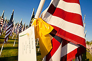 "10 SEPTEMBER 2011 - TEMPE, AZ:     A card memorializing a person killed in the attack on the World Trade Center on a flag in the ""Healing Field"" in Tempe, AZ. The ""Healing Field,"" a display of 2,996 flags, one for each person killed in the September 11 terrorists attacks on the World Trade Center in New York City and Washington DC, have become an annual tradition in Tempe. The event is sponsored by the National Exchange Club.      PHOTO BY JACK KURTZ"