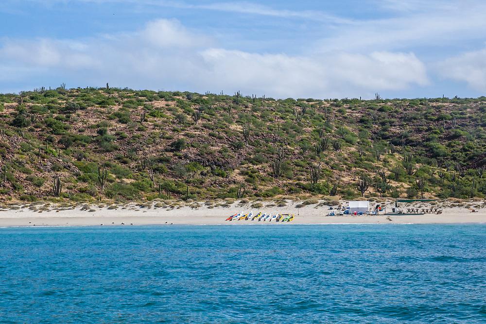 BOA Kayaking Tour beach camp setup on Isla Espiritu Santo, Gulf of California, Mexico (Near La Paz).