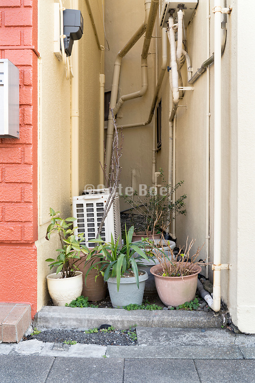 potted plants placed between two buildings Japan