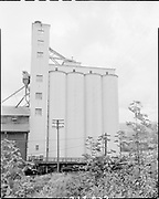 "Ackroyd 07126-2. ""Leval Mickelson. Cargill Grain elevators. September 10, 1956"" (Balfour, Guthrie & Co., Bunge Grain, Permanente Cement dock, Cargill Irving grain elevator, ECSI # 5561, 800 N. River St.)"