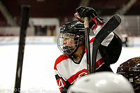 The 3rd Annual Women's Beanpot Charity Hockey Challenge was held at Boston University's Agganis Arena on February 11, 2020