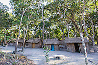 Grass huts of an illegal logging camp, Dondo Forest, Beira, Sofala Province, Mozambique