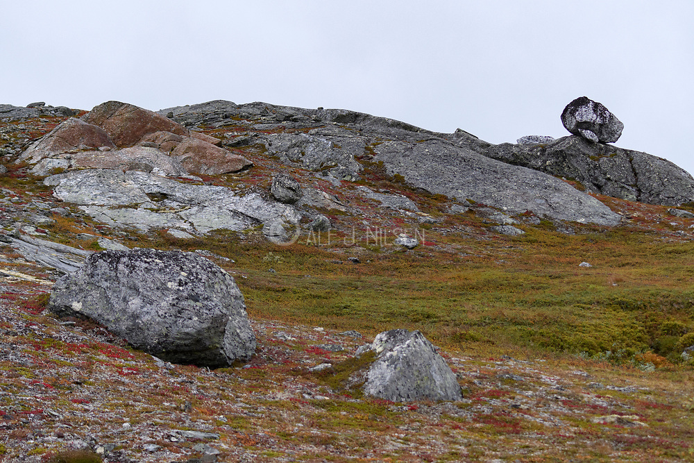 Rocky terrain with boulders left over from the ice age in Lierne National Park (Tröndelag, Norway).