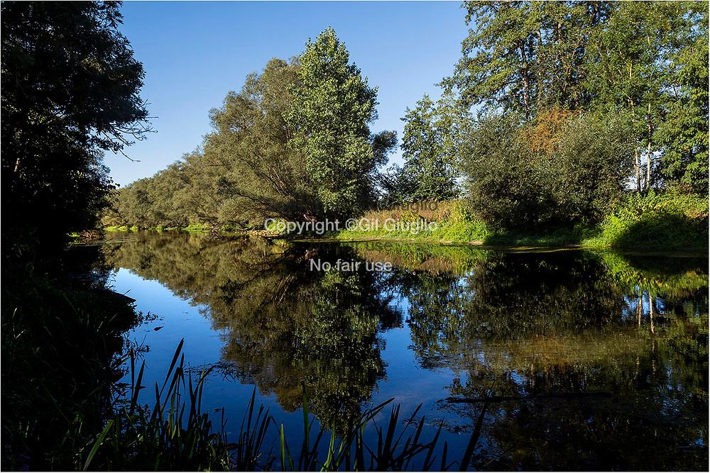 France, Grand-Est region, Meuse department, Côtes-de-Meuse area, Meuse river area of Sorcy-Saint-Martin village // France, Grand-Est, Meuse (55), Côte-de-Meuse, fleuve Meuse proche de village de Sorcy-Saint-MArtin