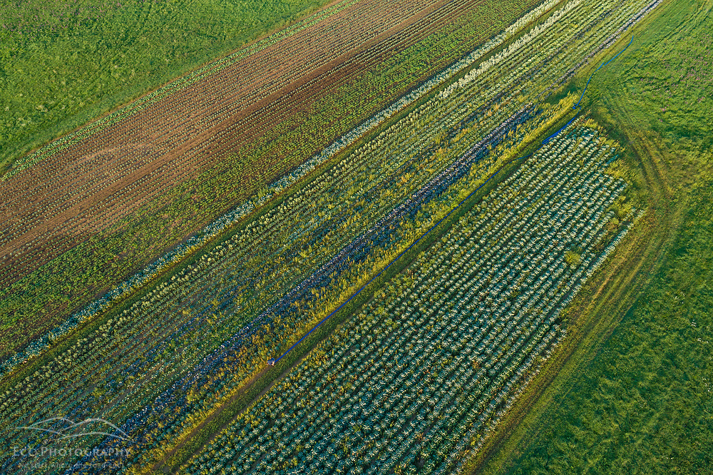 Farm fields on Kinney Hill in South Hampton, New Hampshire.