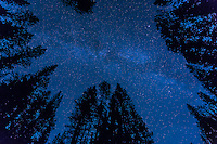 A long exposure image of the night sky over Waterfowl Lakes on the Icefields Parkway in Banff National Park. It was extremely dark and many more stars than we can normally see were visible in the sky.<br /> <br /> ©2015, Sean Phillips<br /> http://www.RiverwoodPhotography.com