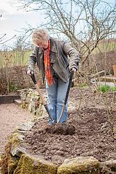 Carol Klein dividing a clump of Geranium psilostemon before replanting in Annie's border