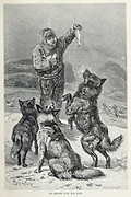 An Eskimo feeds his Dogs From the book ' Royal Natural History ' Volume 1 Section II Edited by  Richard Lydekker, Published in London by Frederick Warne & Co in 1893-1894