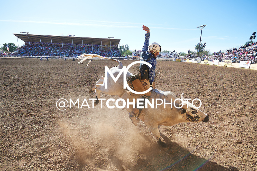 Riker Carter / T115 Who's That of Bridwell, Red Bluff 2019<br /> <br /> <br />   <br /> <br /> <br /> File shown may be an unedited low resolution version used as a proof only. All prints are 100% guaranteed for quality. Sizes 8x10+ come with a version for personal social media. I am currently not selling downloads for commercial/brand use.