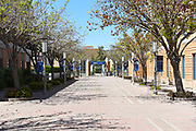 The Path Leading to the UCI Arts College at The University of California Irvine
