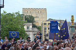 Pro EU rally held after Brexit referendum voted for the UK to leave the EU, Norwich July 2016, UK, Norwich voted to Remain