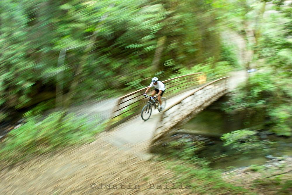 Man mountain biking on trail through redwoods in Santa Cruz, CA