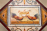 .Roman Mosaic portrait of a Cockerall Fight from Pompei Archaeological Site. Naples Archaeological Museum ..<br /> <br /> If you prefer to buy from our ALAMY PHOTO LIBRARY  Collection visit : https://www.alamy.com/portfolio/paul-williams-funkystock - Scroll down and type - Roman Mosaic Naples - into LOWER search box. {TIP - Refine search by adding a background colour as well}.<br /> <br /> Visit our ROMAN ART & HISTORIC SITES PHOTO COLLECTIONS for more photos to download or buy as wall art prints https://funkystock.photoshelter.com/gallery-collection/The-Romans-Art-Artefacts-Antiquities-Historic-Sites-Pictures-Images/C0000r2uLJJo9_s0